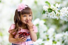 девушка сада вишни шара яблока Стоковая Фотография