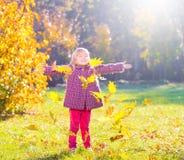 Девушка, сад, осень, понижаясь выходит Стоковые Фотографии RF