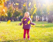 Девушка, сад, осень, понижаясь выходит Стоковые Изображения