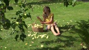 Девушка садовника сидя на земле и собирая плодоовощи яблок ветробоя зрелые 4K акции видеоматериалы