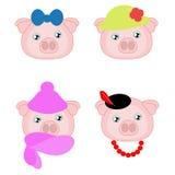 Девушка свиньи в различной шляпе Стоковая Фотография RF
