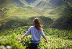Девушка свободы в долине Стоковое Фото