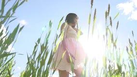 Девушка сексуальная в платье в поле зеленой травы Солнце слепимости солнечного света образа жизни девушки, счастье лета Стоковая Фотография RF