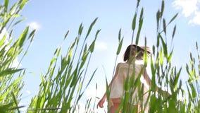 Девушка сексуальная в платье в поле зеленой травы Солнце слепимости солнечного света образа жизни девушки, счастье лета Стоковая Фотография