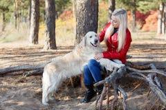 Девушка сидит на корне дерева и штрихует большую собаку в парке осенью снаружи Стоковые Фотографии RF