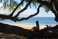 Девушка сидя на ветви океаном стоковая фотография rf