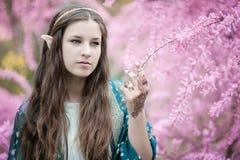 Девушка сказки Portrai мистической женщины эльфа Стоковые Изображения