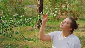 Девушка смотря дерево цветения сток-видео