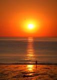 девушка смотря заход солнца Стоковые Фотографии RF