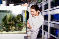 Девушка смотря красочных рыб Стоковые Изображения RF