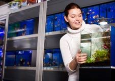 Девушка смотря молодые рыб в аквариуме Стоковые Изображения