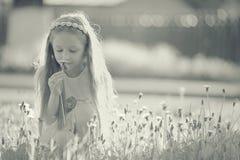 Девушка собирает цветки Стоковое Изображение