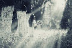 Девушка собирает цветки Стоковое Фото