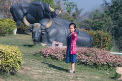 Девушка стоит в цветочном саде в утре стоковые фото
