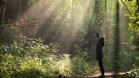 Девушка стоя на лесе утра после дождя сток-видео