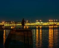 Девушка стоя на ноче на доке города и восхищает взгляд города освещения Стоковое фото RF