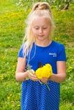 Девушка с букетом одуванчиков Стоковые Изображения