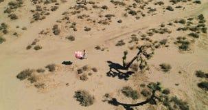 Девушка с воздушными шарами идя в мираж El озера пустыни Воздушный трутень Октябрь 2017 видеоматериал