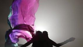 Девушка с вуалью в ее руках танцуя танец живота Sihouette детали проверки сведений большие больше много моего другого дыма серии  сток-видео