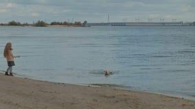 Девушка с вьющиеся волосы в теплых одеждах, бегущ вокруг, играя с коричневой собакой на пляже, собака вытягивая ручку вне акции видеоматериалы