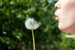Девушка с губами в лесе, солнечным цветком шарлаха deutvanchika погоды стоковое изображение rf