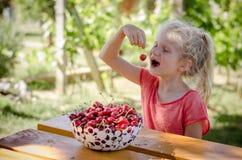 Девушка с зрелым красным плодоовощ вишни стоковое фото rf