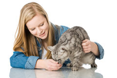 Девушка с котом Стоковое Фото