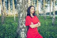 Девушка с красными губами в красном платье стоит в стиле моды рощи березы стоковое фото rf