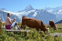 Девушка с кувшином молока и коровы Стоковая Фотография RF