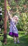 Девушка с попытками яблока Стоковое Изображение RF