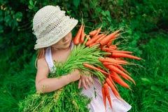 Девушка с пуком свеже морковей Стоковое Изображение