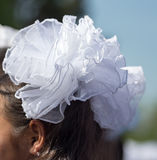 Девушка с смычками белизны на ее голове Стоковое Изображение RF