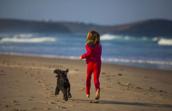 Девушка с собакой на пляже стоковое изображение rf