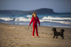 Девушка с собакой на пляже Стоковые Фото