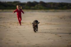 Девушка с собакой на пляже Стоковые Фотографии RF