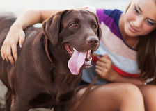 Девушка с собакой Стоковые Фотографии RF