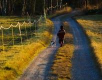 Девушка с собакой Стоковое Изображение RF