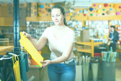 Девушка с сумками подарка выбирает аксессуары для подарка Стоковые Изображения RF