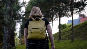 Девушка с сумкой над его назад идет вверх через красивую прогулку сосны рекой r r o видеоматериал