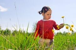 Девушка с цветками одуванчика Стоковое Фото