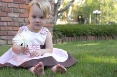 Девушка с цветком стоковое фото rf