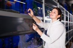 Девушка указывает к интересным породам малых рыб Стоковые Изображения