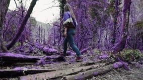 Девушка фиолетового леса сказки красивая в непринужденном стиле идет в глубокий лес boxwood и поворачивает путь в сток-видео
