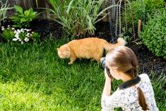 Девушка фотографирует кот Стоковые Фото
