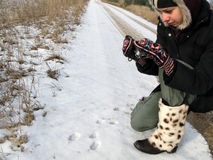 Девушка фотографируя животные трассировки Стоковые Фотографии RF