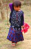 Девушка цветка библиографии стоковая фотография