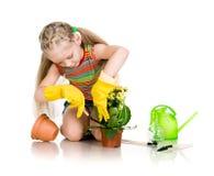 Девушка цветка брызгает Стоковые Фотографии RF