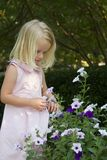 девушка цветков меньшяя рудоразборка Стоковые Изображения
