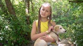 Девушка штрихуя собаку сток-видео