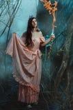 Девушка эльфа в fairy лесе Стоковое фото RF